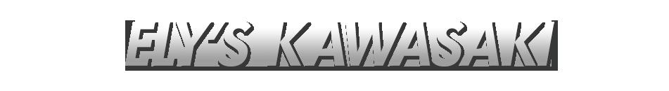 Ely's Kawasaki